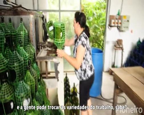 Dia do Trabalho: Patricia se divide entre a agricultura, a vinícola e a casa