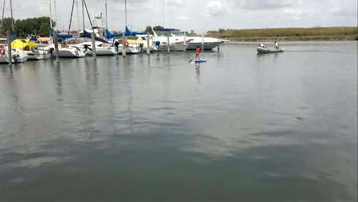 Veja como se pratica o stand up paddle, que está virando mania em Rio Grande