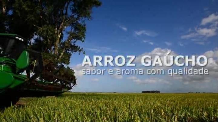 Arroz gaúcho conquista mercados com sabor e qualidade
