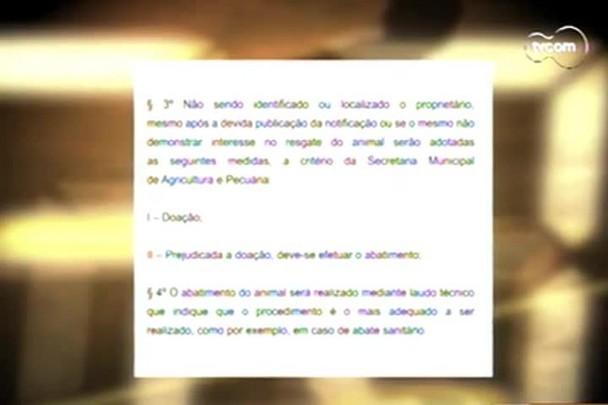 TVCOM 20h - Prefeitura de Porto Bello cancela decreto que permite abate de animais de rua - 10.1.15