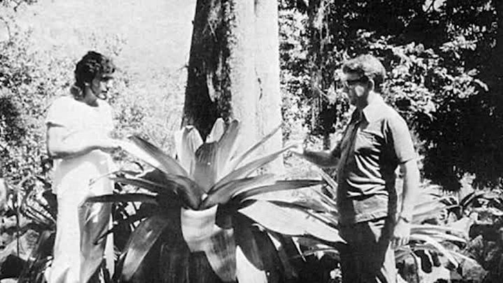 Padre Raulino Reitz, idealizador do Parque da Serra do Tabuleiro