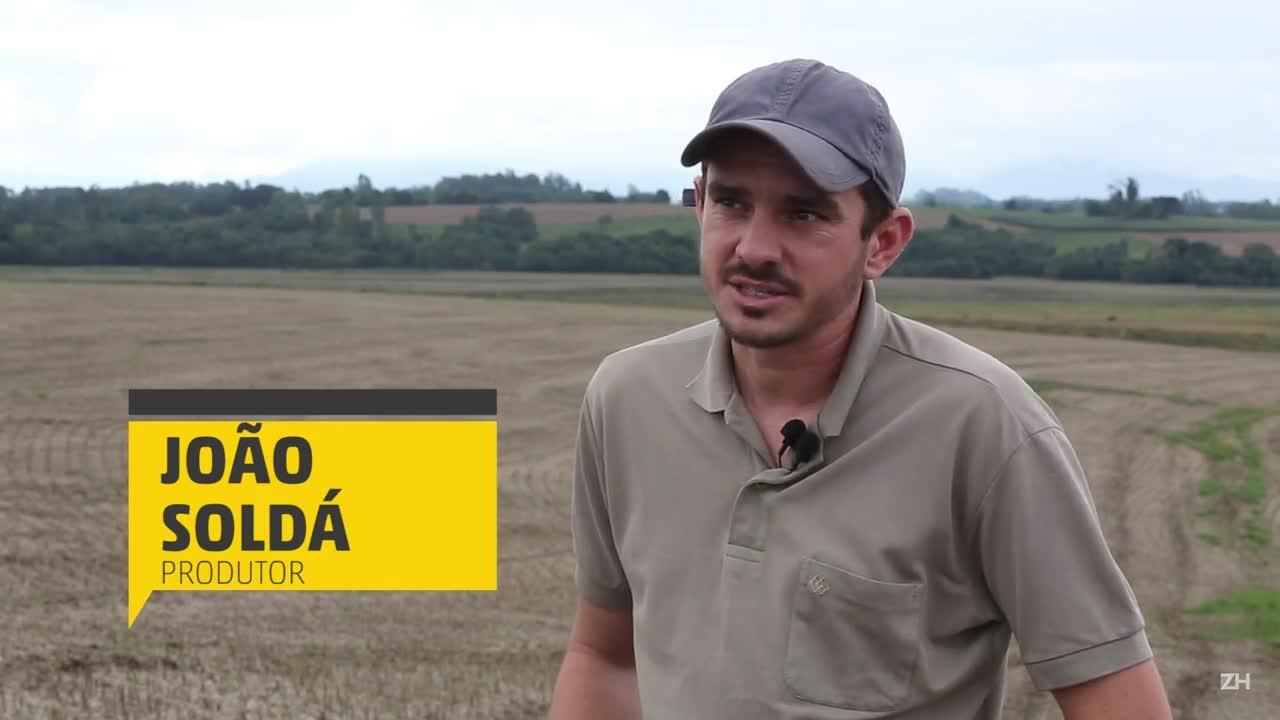 Recuperação x manutenção do solo: produtor compara a produtividade da soja