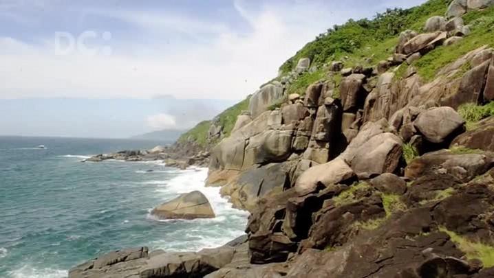 #DCpelaspraias: Ilha do Campeche une história, turismo e preservação da natureza em Florianópolis