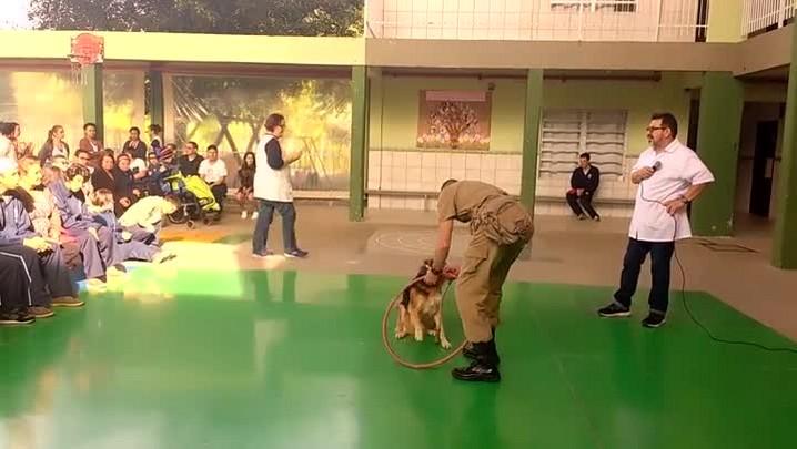 Veja a visita do cãozinho Caju à APAE de Joinville