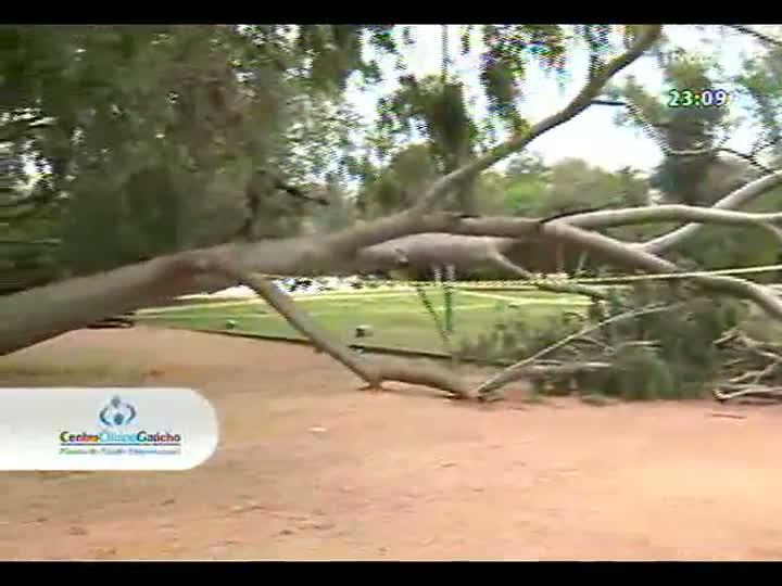 Conversas Cruzadas - Como evitar novos acidentes com árvores em Porto Alegre? - Bloco 4 - 02/09/2013