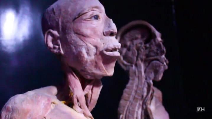 Exposição traz corpos humanos a Porto Alegre