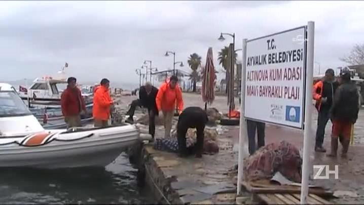 Pelo menos 21 migrantes morrem no litoral da Turquia