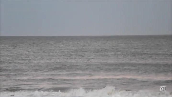 Baleias são avistadas em Capão da Canoa e Nova Tramandaí
