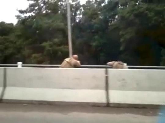Vídeo mostra ação da PM no mangue