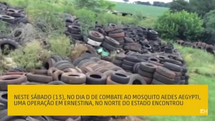Operação encontra mais de 30 mil pneus em depósito clandestino