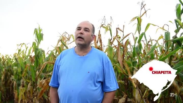 Veja como cultivar milho e soja na mesma safra