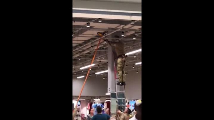 Arara mobiliza resgate em shopping de Canoas
