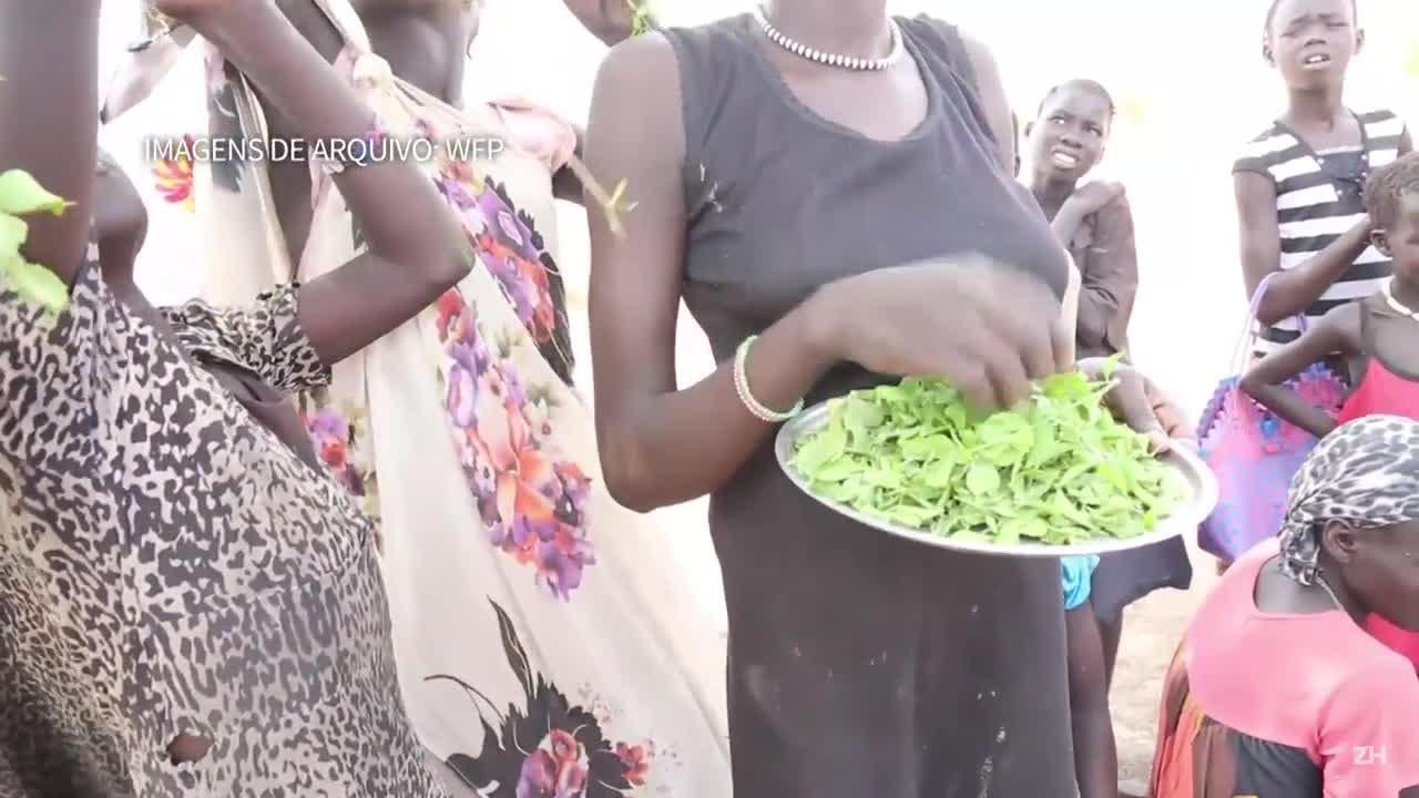 Governo do Sudão do Sul declara fome em várias zonas do país