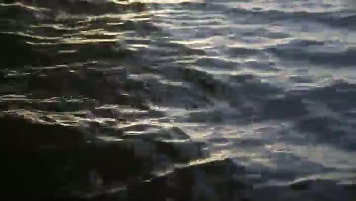 Pescador solitário volta à terra natal