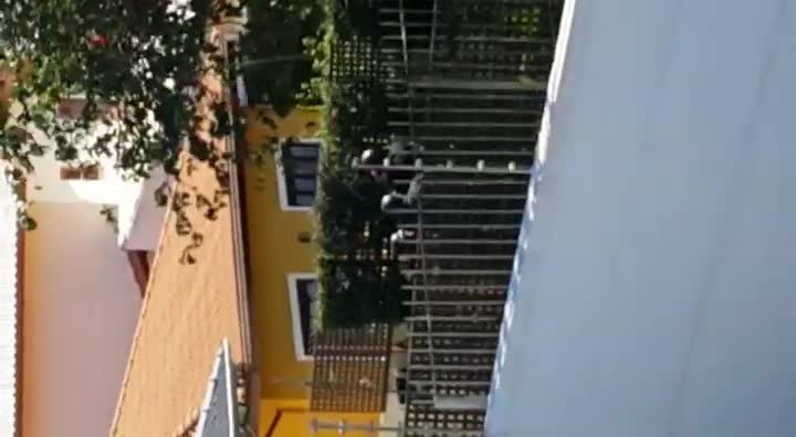 Vizinho de vítima de assalto grava ação da polícia, em Florianópolis