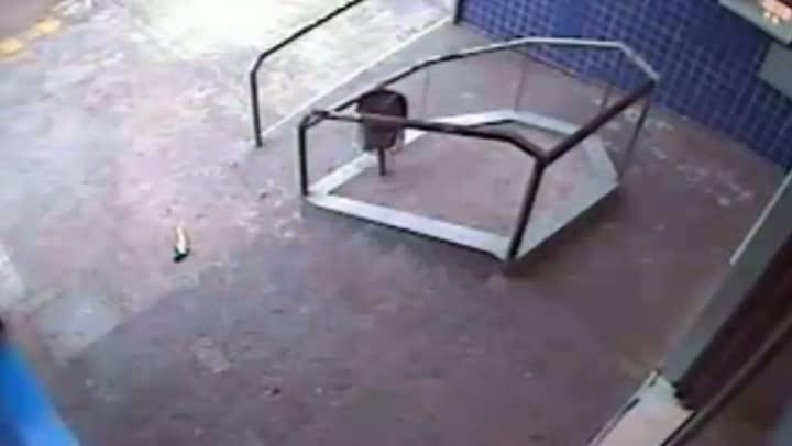Câmeras de segurança registram tentativa de homicídio