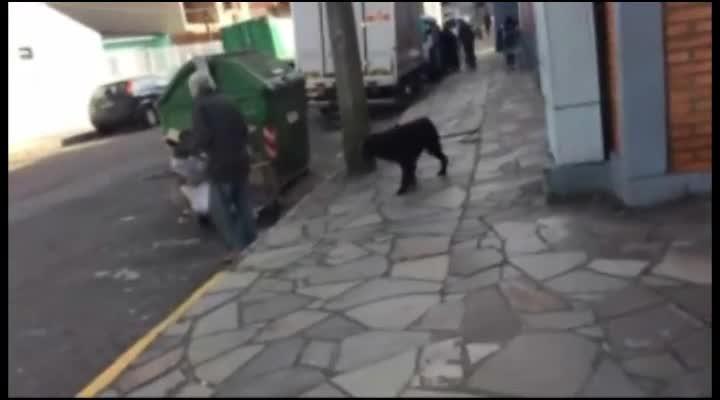 Dia do Amigo Diário de Santa Maria 2014 - catador Paulo Oliveira e seu cão
