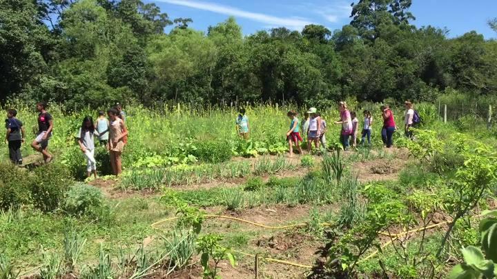 Lomba do Pinheiro se preocupa com o futuro da horta comunitária