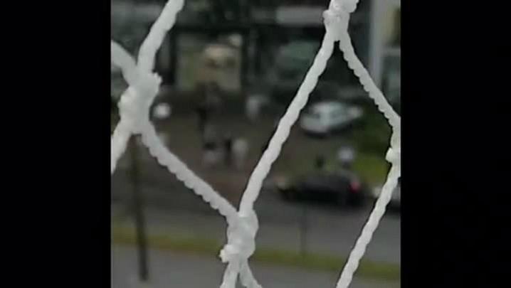 Revenda de carros na zona norte da Capital é esvaziada após tiroteio