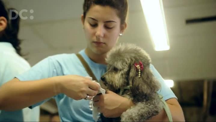 Hospital Infantil recebe visita da Ong Cão Amigo & Cia