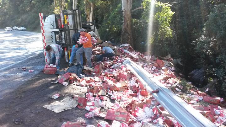 Carga de leite é saqueada de carreta tombada na ERS-122, em Flores da Cunha