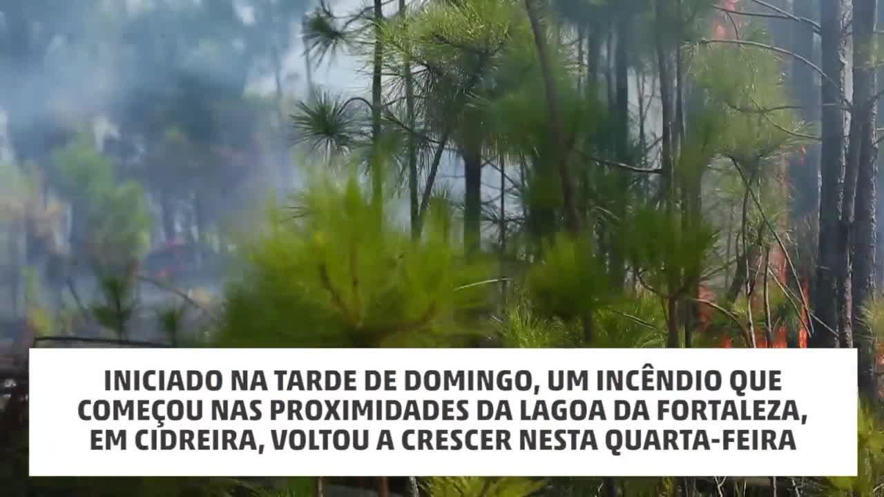 Fogo volta a atingir área florestal e bombeiros chamam reforços em Cidreira,