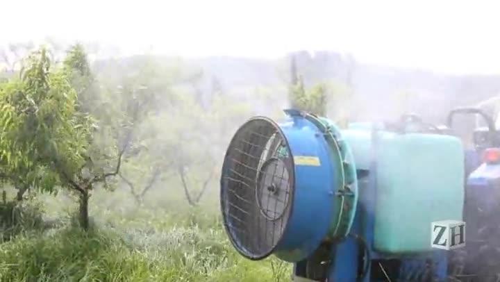 Agrotóxicos: do campo para a sua casa