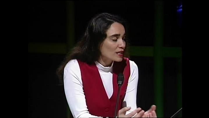 Elias Figueroa - Sobre a paixão pelo Internacional - Entrevista concedida à TVCOM em 1995