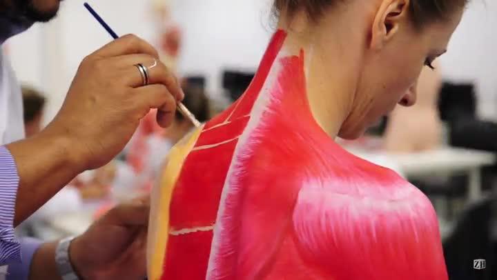 Pintura corporal substitui o uso de cadáveres em aula de anatomia