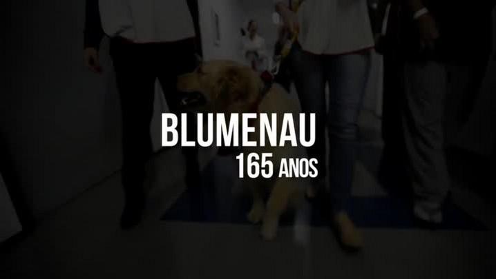 Amar Blumenau - Confortar