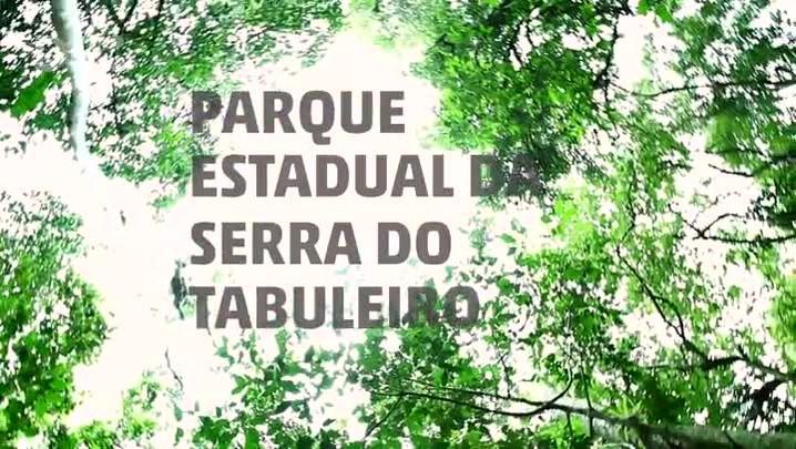 A importância do Parque da Serra do Tabuleiro para Santa Catarina