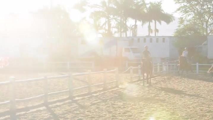 Como é preparado um cavalo para a competição