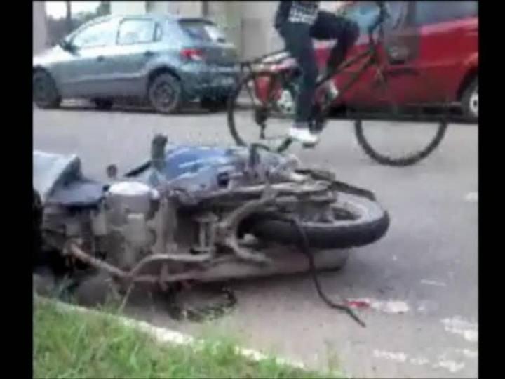 Cobra causa acidente de trânsito em São Francisco do Sul