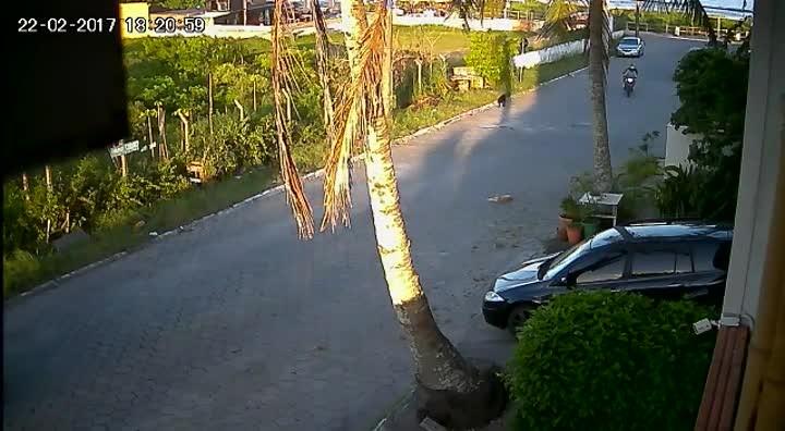 Momento em que dois homens fogem após assassinar engenheiro de Balneário Camboriú