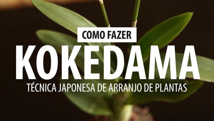 Aprenda a fazer um kokedama