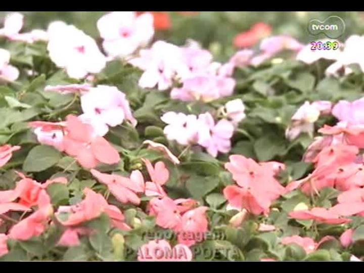 TVCOM Tudo Mais - Tudo+ Casa: saiba como conservar as plantas no verão e enquanto está longe de casa