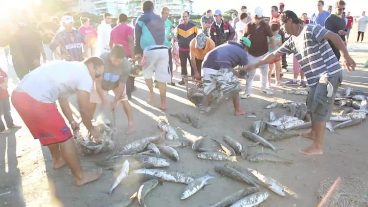 Internacional faz treino na Praia do Santinho, mas quem chama a atenção são os pescadores de tainha