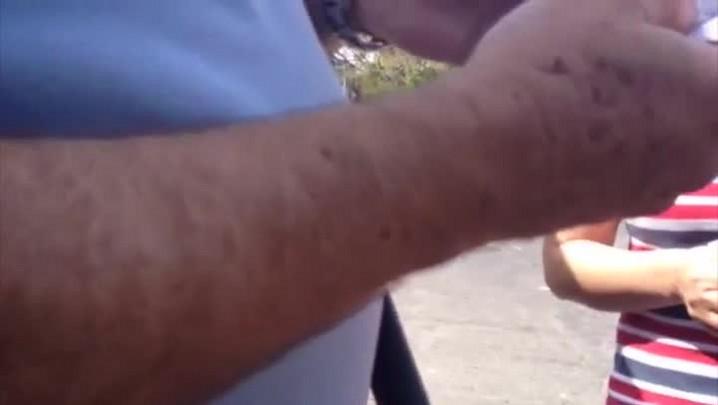 Flagra de boca de urna em Porto Alegre - 5/10/2014