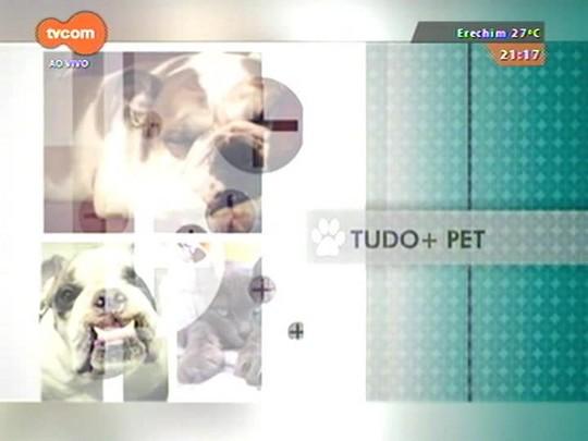 TVCOM Tudo Mais - \'Tudo+Pet\': saiba que benefícios os gatos podem ter com a tosa e os cuidados com pelos no verão