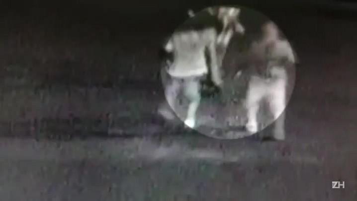 Câmeras de segurança flagram assalto em Canoas