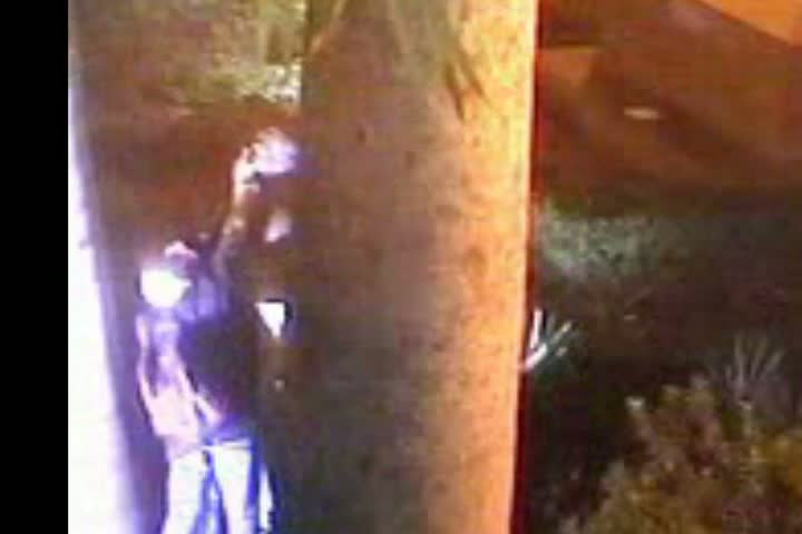 Camêra de vigilância - Polícia Civil investiga catador de latinhas como suposto ladrão dos bustos