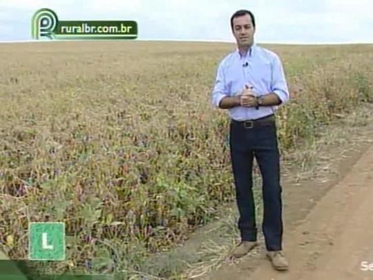 T�cnica Rural: Saiba como � feita a desseca��o da soja e a regulagem da colheitadeira
