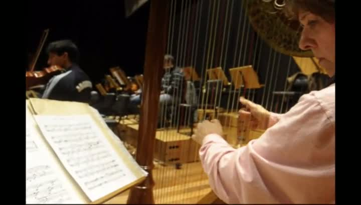 Norma Holtzer Rodrigues é a solista convidada desta quinta-feira na Quinta Sinfônica