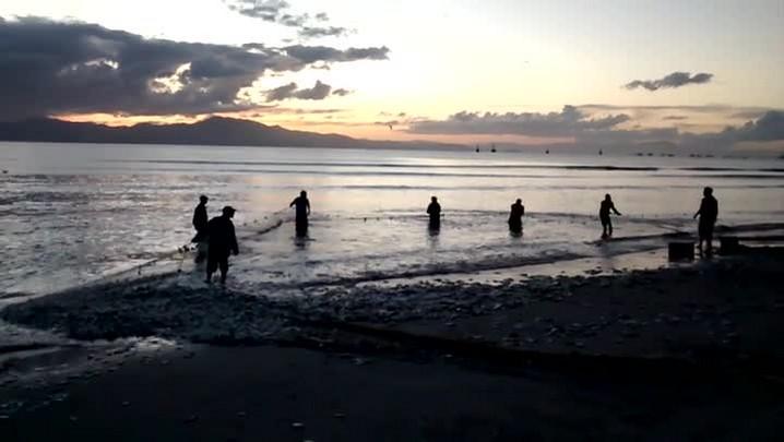 Mais de uma tonelada de peixes manézinho foi pescada na tarde dessa sexta-feira (29), na Cachoeira do Bom Jesus