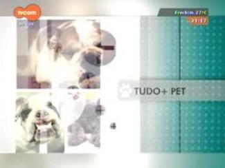 TVCOM Tudo Mais - 'Tudo+Pet': saiba que benefícios os gatos podem ter com a tosa e os cuidados com pelos no verão
