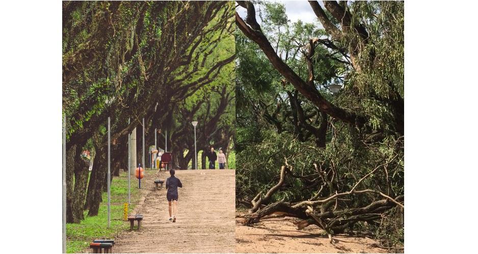 Antes e depois de pontos turísticos devastados pelo temporal