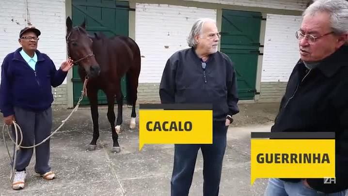 Conheça Frank Lloyd, o cavalo de Guerrinha e Cacalo
