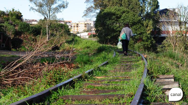 Trem de Bento Gonçalves a Caxias do Sul é sonho distante