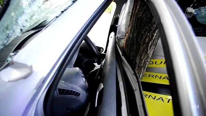 Carro bate em árvore na Av. Salvador França