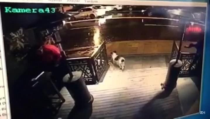 Imagens de câmera de segurança mostram atirador